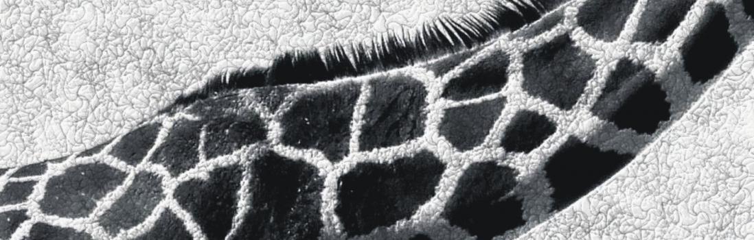 Despigmentantes: solución de la dermofarmacia contra las manchas